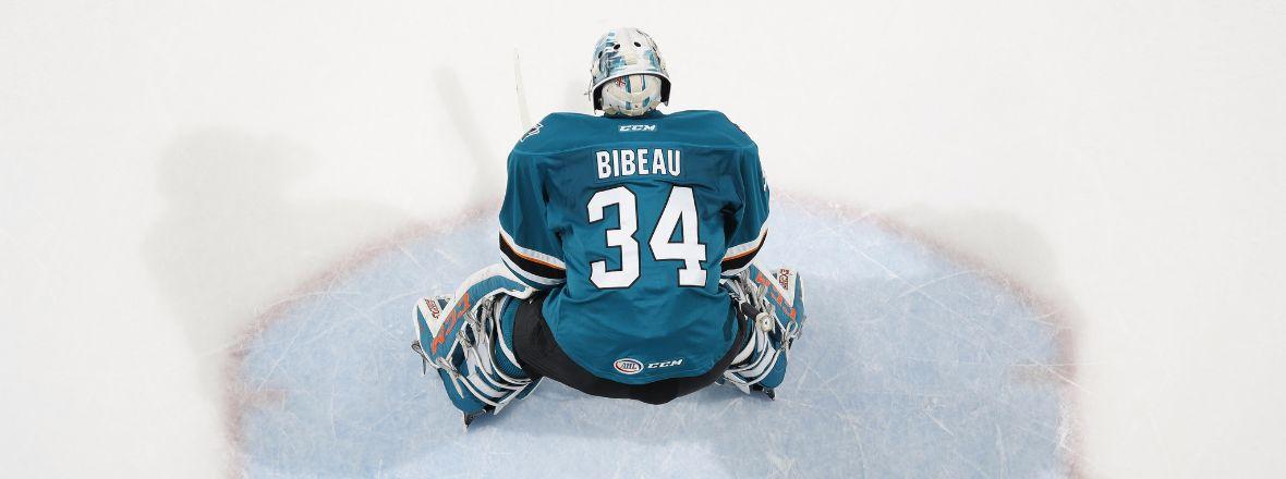 Colorado Acquires Goaltender Bibeau